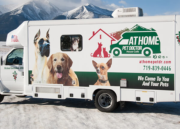 At Home Pet Doctor Of Co Learn About Our Mobile Practice